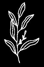 erikavanwijk-webdesign-basic-travel-minimalistic-bladeren-scandi-wit-5