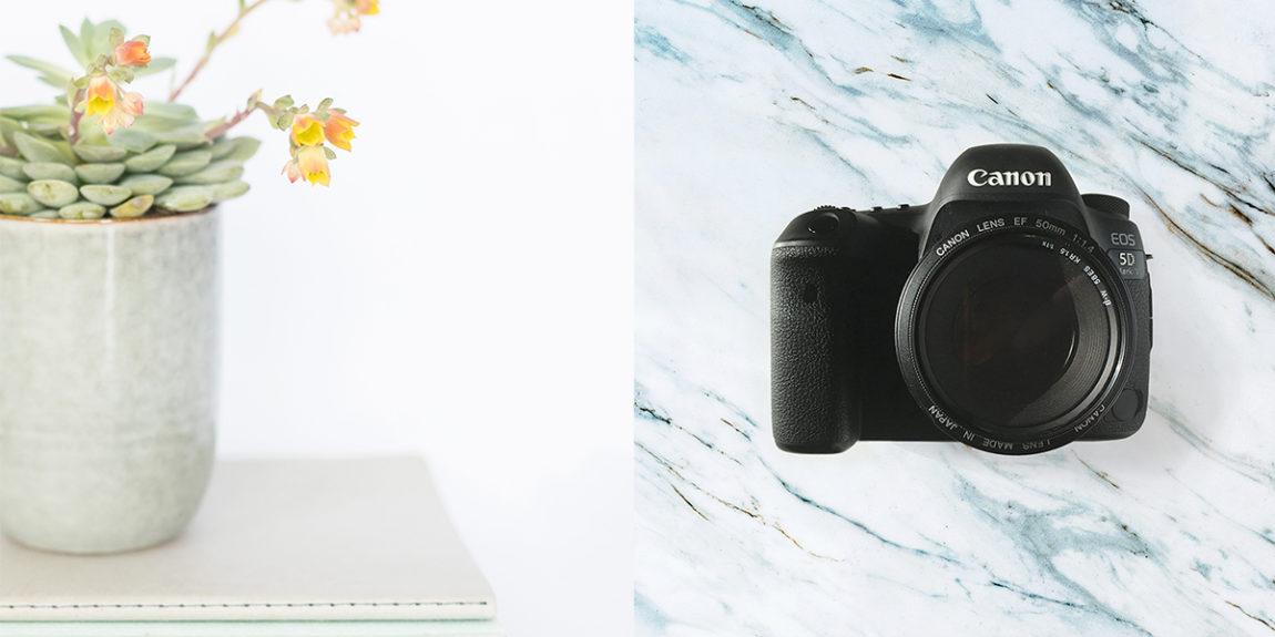 erika-van-wijk-webdesigner-fotograaf-gouda-banner-foto-fotografie