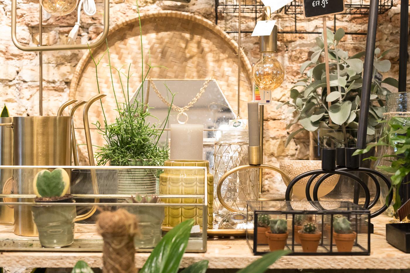 fotografie-locatie-winkel-interieur-styling-groene-vingers-delft-slider-61